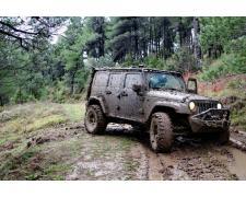 Jeep - в своей среде обитания